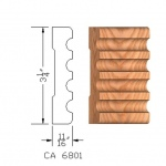 CA6801 Case Moulding