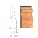 CA6597 Case Moulding